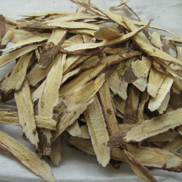 Astragalus extract powder for sale